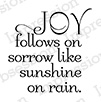 Joy Follows